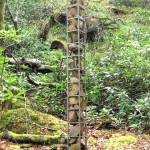 """Forest sculpture-Lunga, 1995, galv steel, stones, 120"""" tall"""