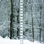 Small Zama (winter)